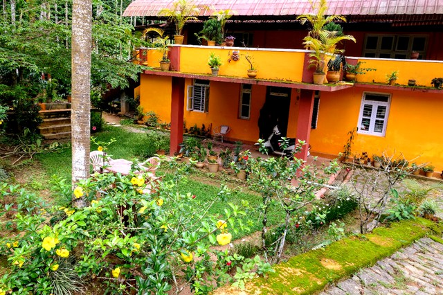 Room stay surrounded with Greenery