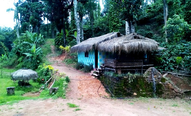Hut House accommodation in Sakleshpur