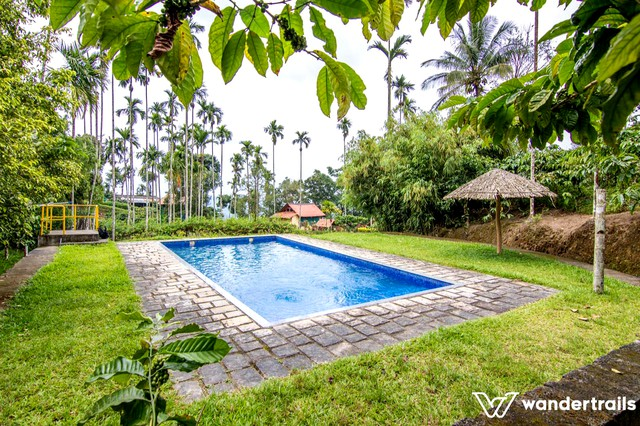Family Room stay in Wayanad