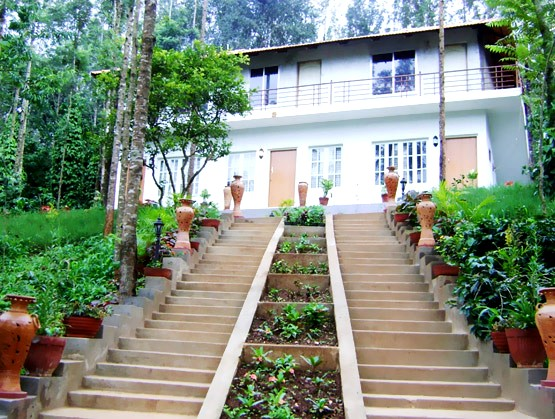 Room stay Surrounded by coffee estates
