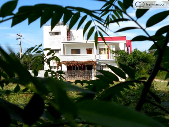 Room Stay in Chikmagalur